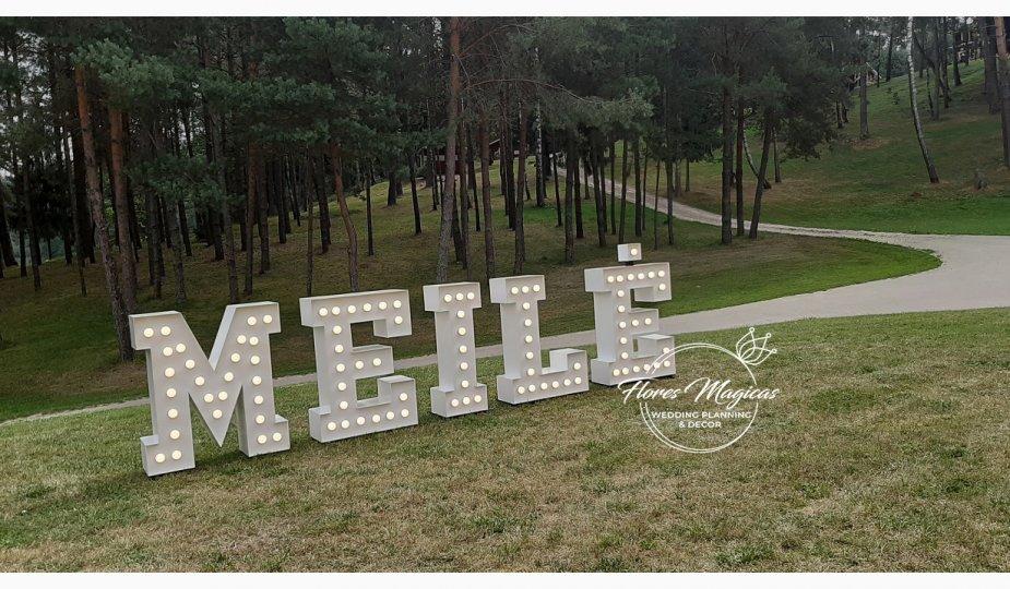 Meile_Dvilypio_ Slenis_2